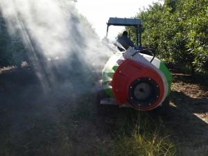 Spraying 1